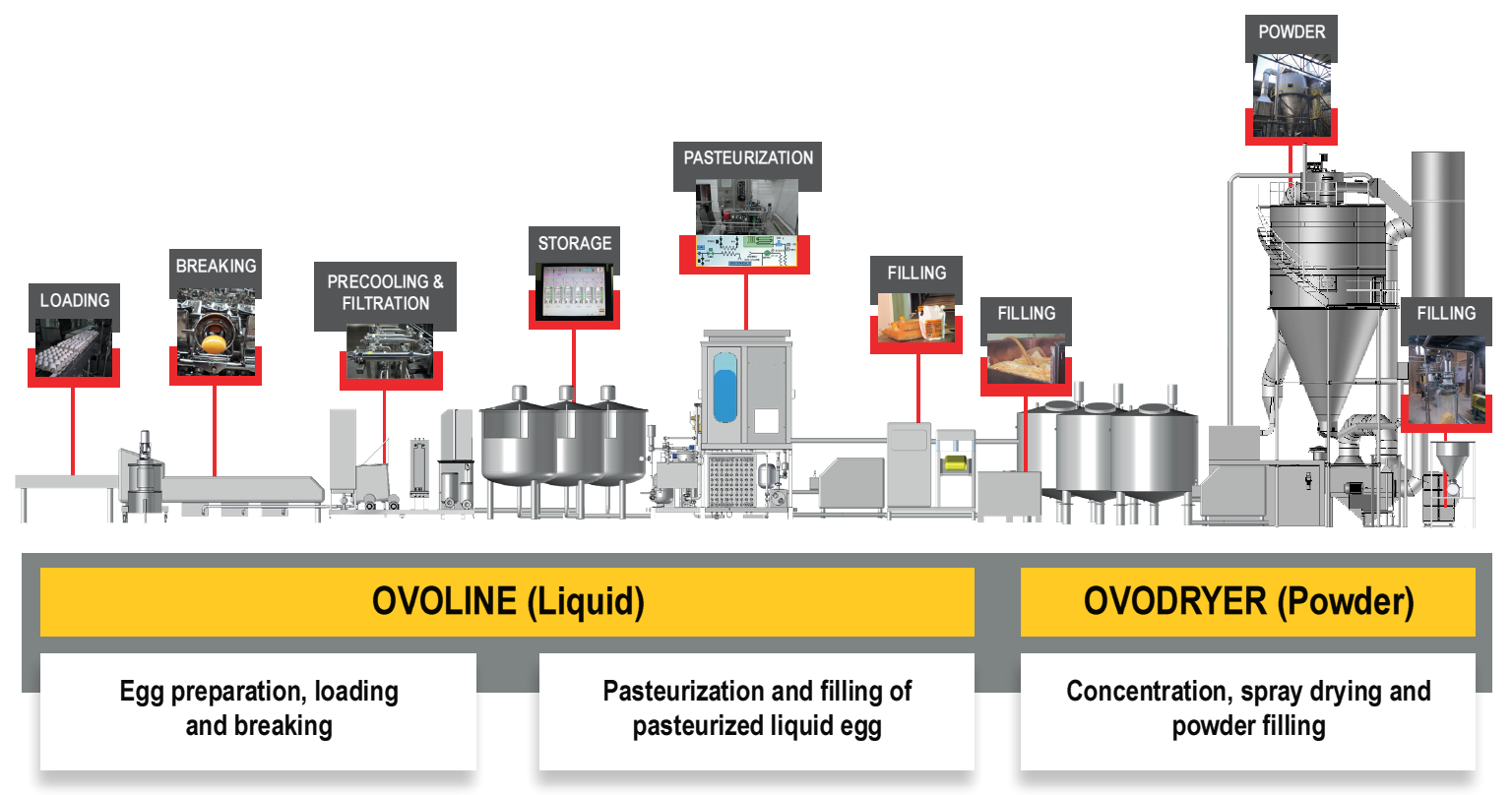 ACTINI - liquid powder egg line - Ovoline Ovodryer