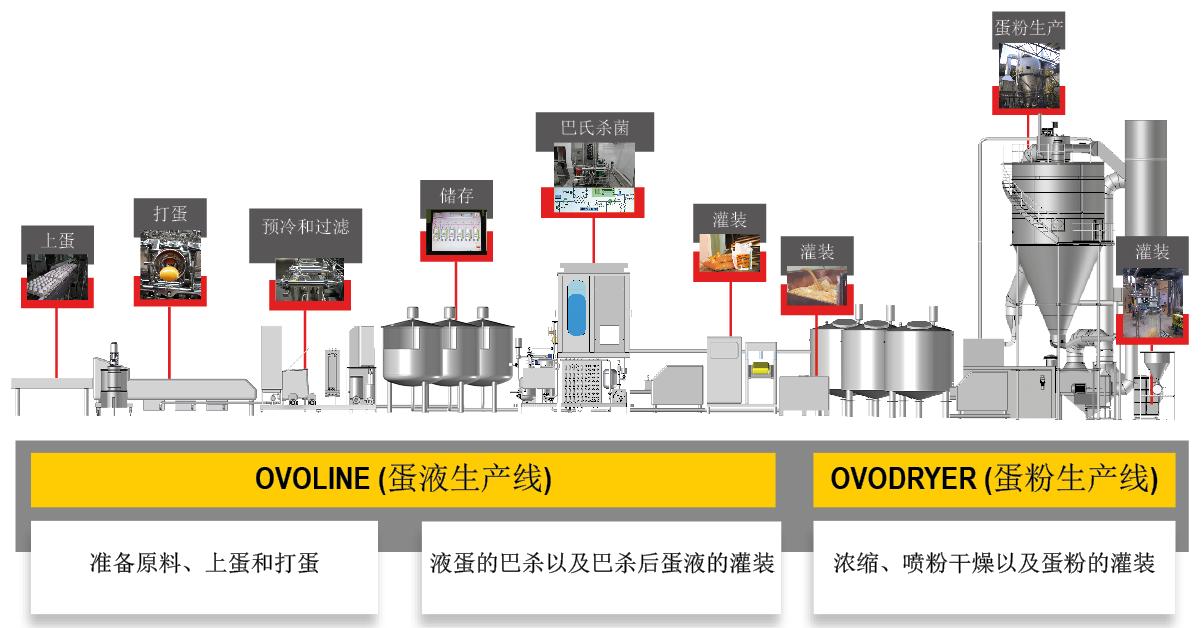 ACTINI - 蛋品深加工生产线