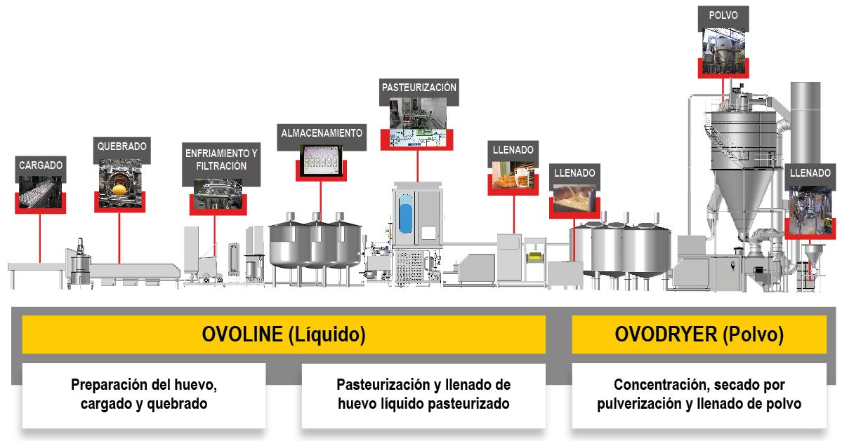 ACTINI línea huevos líquidos y en polvo - Ovodryer Ovoline