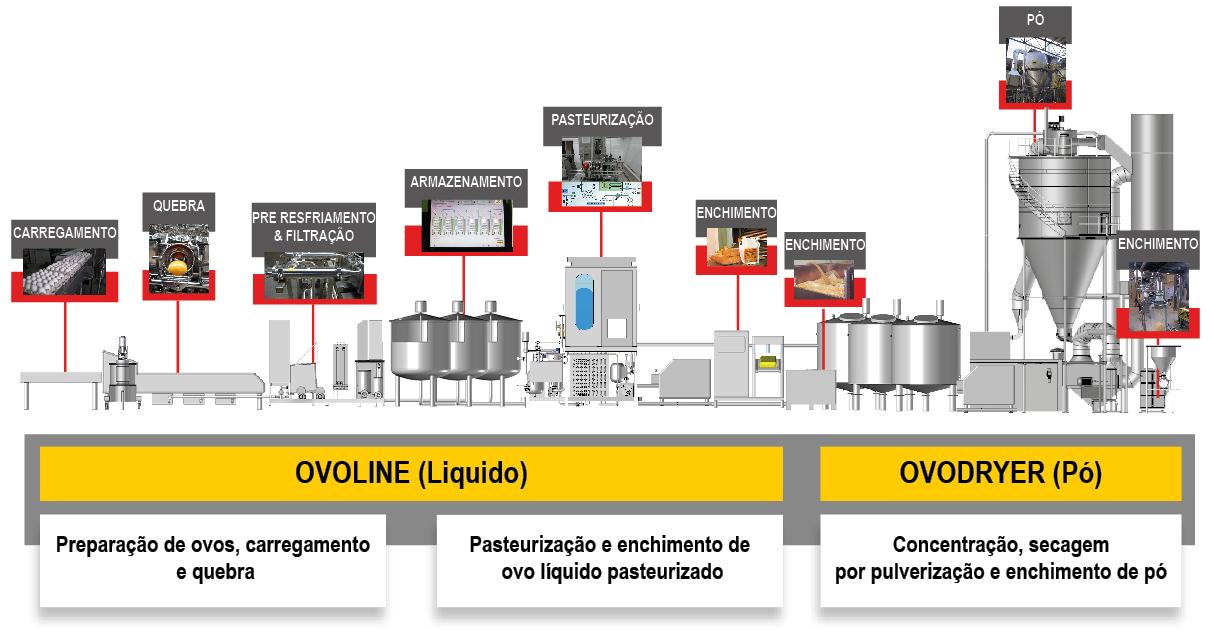 ACTINI - Linha de Ovoprodutos - Ovoline e Ovodryer