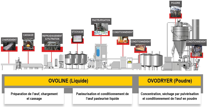 ACTINI Ligne ovoproduits - Ovoline et Ovodryer